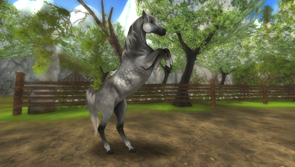 is star stable free