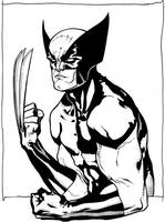 Wolverine commission by timothygreenII