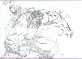 Hulk VS Wolverine by timothygreenII