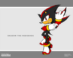 New Sonic Channel: Shadow