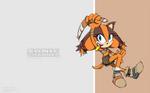 Sonic Channel: Sticks