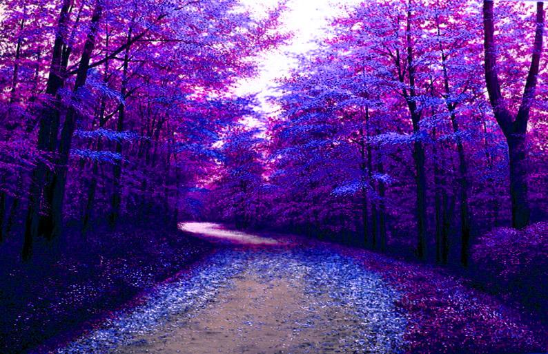 BLUE FOREST by sezartstudio
