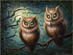 From the life of owls