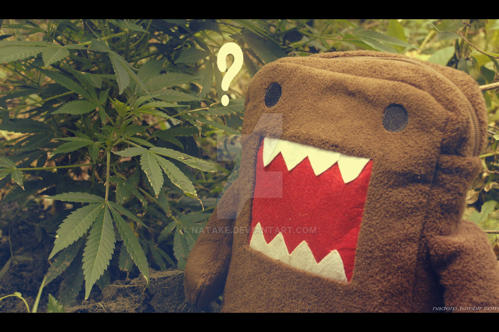 What you found there Domo-kun?