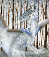 Joy of winter by Dragarta
