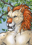 ACEO for Ashkey by Dragarta