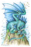 Elements - Water Dragon