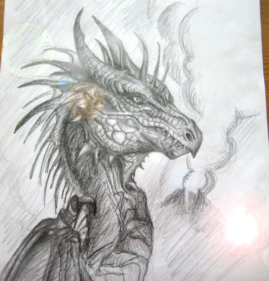 Dragon Drawing by swarovskicrystal on DeviantArt