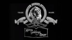 MGM Logo: Jackie The Lion