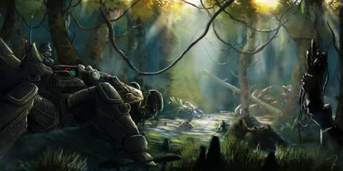 Roaming the Swamp