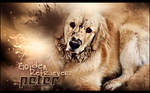 Mi perro Peter