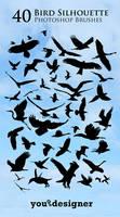 40 Bird Silhouette Photoshop Brushes