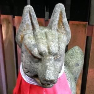Inari123's Profile Picture