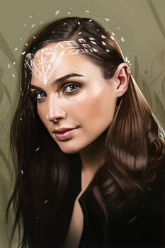 Gal Gadot - Wonder Woman Illustration