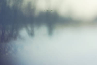 002 by odpium