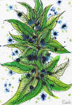 Leaf Ribs