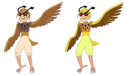 HootHoot Harpies