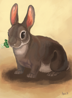 Rabbit With a Clover