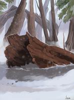 Log by ANicB