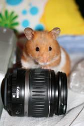 Camera lens.....nom
