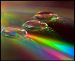 Water drops 1