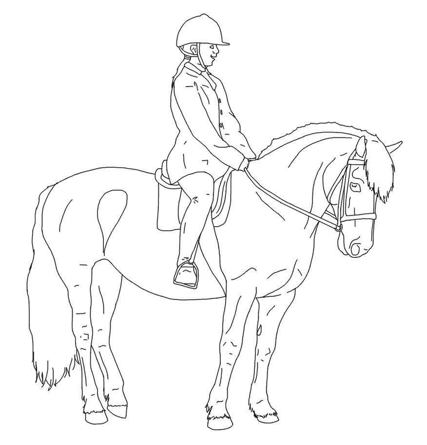 How To Draw A Horse Rider Horse_and_rider_lines_01_by_equineribbon D41t76b  Standing Horse Sketch 2 On Standing Horse Sketch