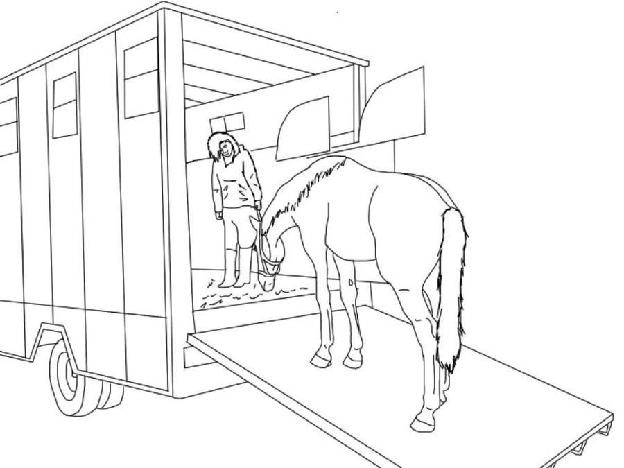 Cross Country Horse Pages Coloring Pages
