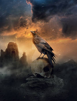 The Raven  king of the crows