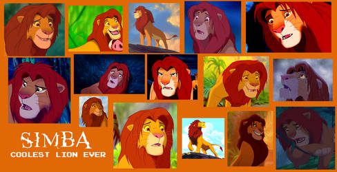 Adult Simba From Lion King Collage