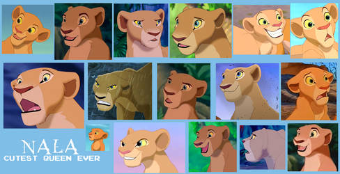 Nala From Lion King Collage