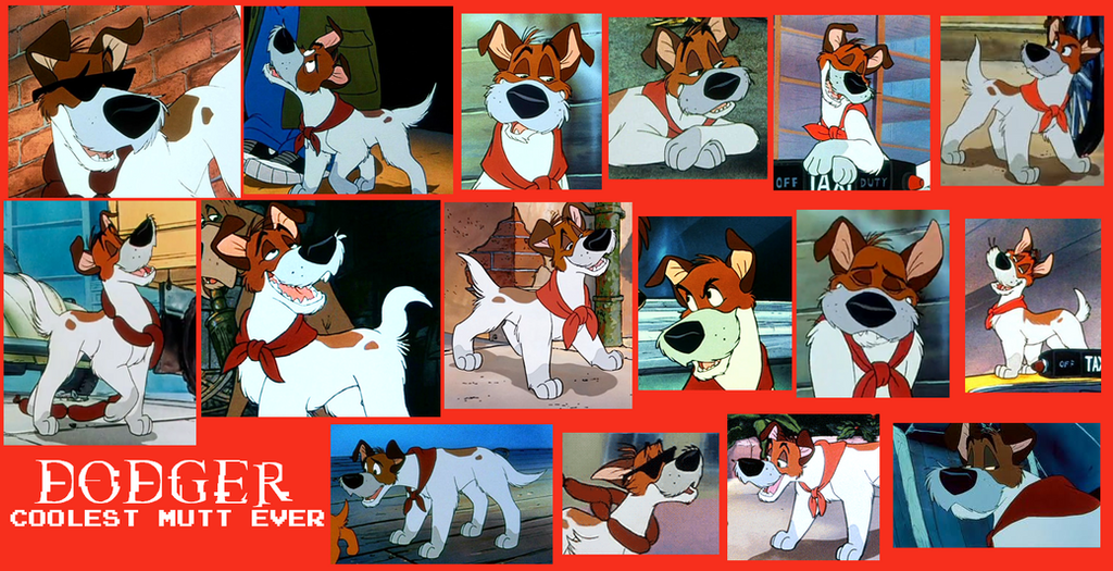 Oliver The Cat And Dog