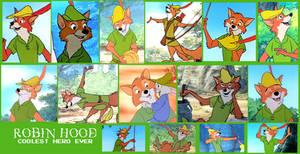 Robin Hood Montage
