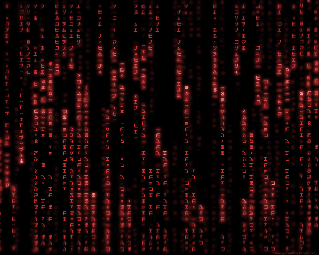 The gallery for --> Red Matrix Code Wallpaper