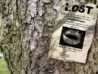 LOTR - lost ring by steelgohst