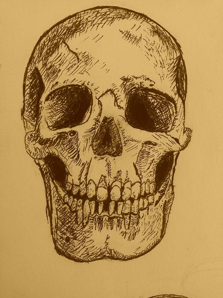 Skull by David-Lee-Evans