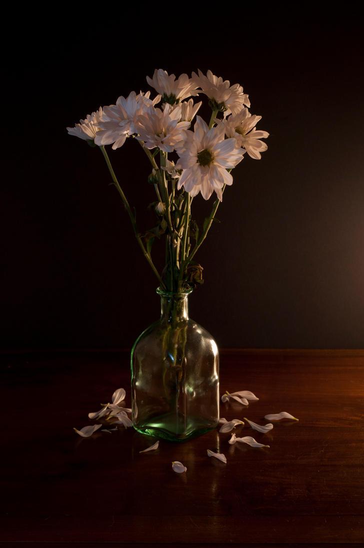 Flower by David-Lee-Evans