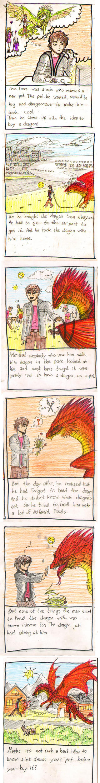How to feed your dragon by Sunima