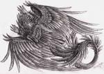 Draco Ornamentalis