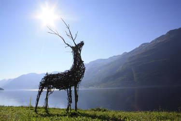 Deer Collaboration