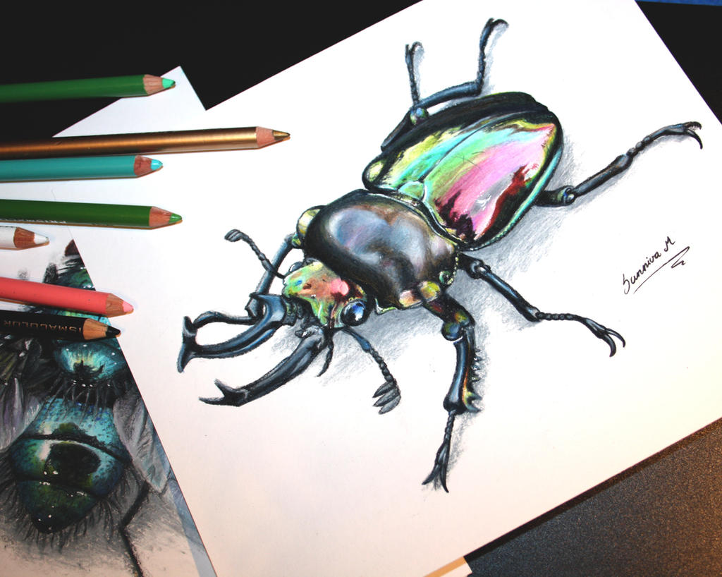 Colorful horned beetle - photo#14
