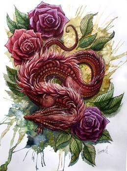Drage med roser