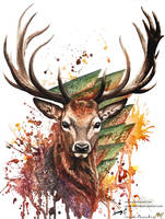 Young deer by Sunima