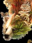 Autumn spirit bear by Sunima