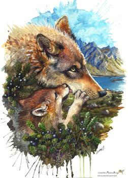 Wolf cub kiss