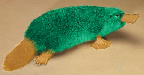 ...Perry the platypus?