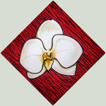 Pop Orchid by Destiny-Carter
