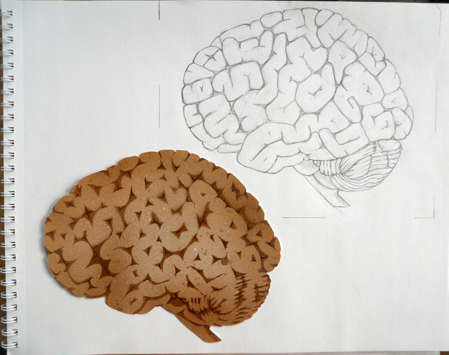 Brain Sketch and Stencil Print by darcydoll on DeviantArt