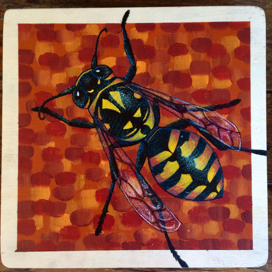 Buzz Box by darcydoll