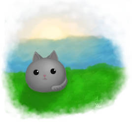 Just a round kitty by RegaSevenfold