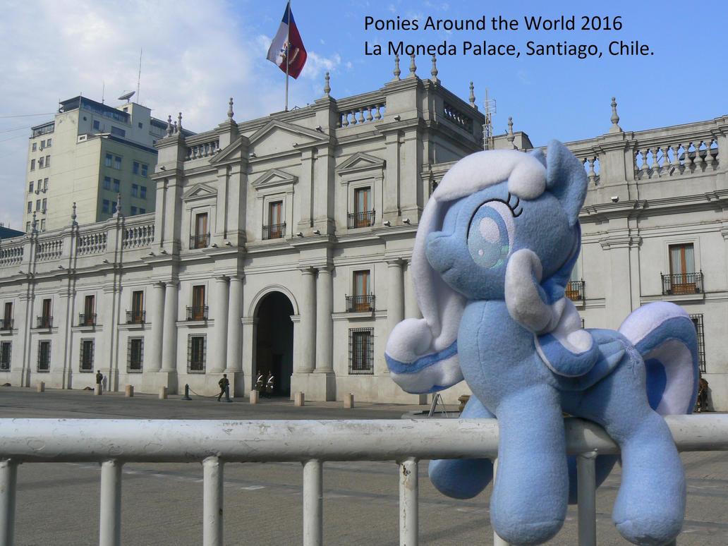 Snowdrop at La Moneda by pakom15w